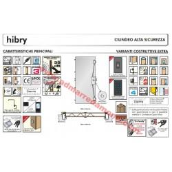 Porta Blindata Dierre mod.HIBRY (predisposta) con apertura automatica con scheda e chiave 210 90