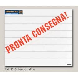 Portone CONSEGNA VELOCE L-2500 H-2250 sezionale garage Hormann Bianco Traffico ral 9016
