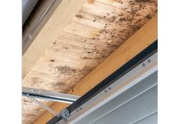 Come ridurre l'umidità in garage ed evitare muffe